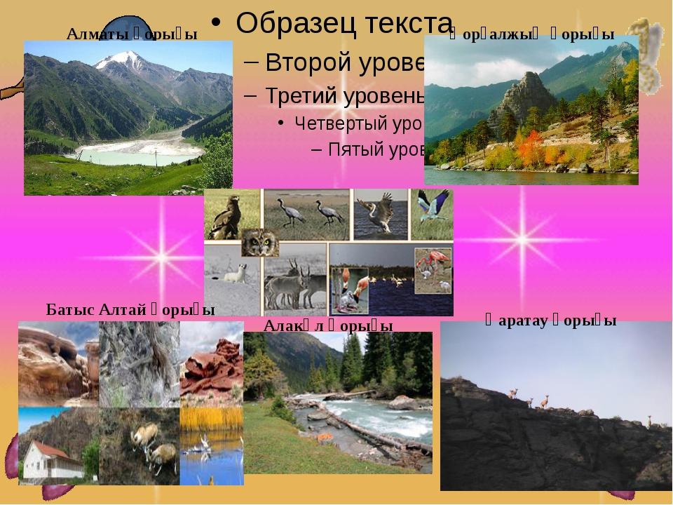 Алматы қорығы Қорғалжың қорығы Батыс Алтай қорығы Алакөл қорығы Қаратау қорығы