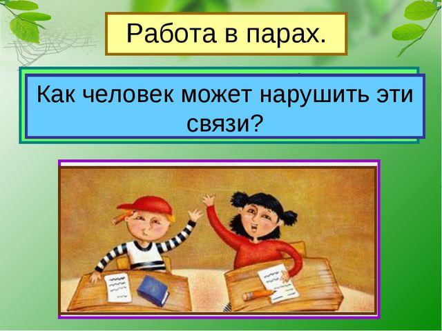 Работа в парах. Рассмотрите рисунки в учебнике на стр.65, приведите примеры с...