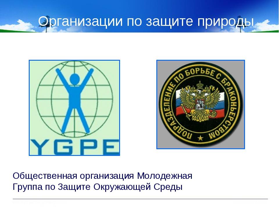 Организации по защите природы Общественная организация Молодежная Группа по З...