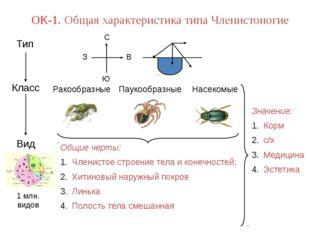 1 млн. видов ОК-1. Общая характеристика типа Членистоногие Значение: Корм с/х