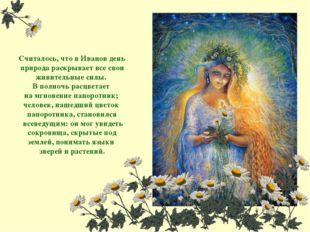 Считалось, что в Иванов день природа раскрывает все свои живительные силы. В