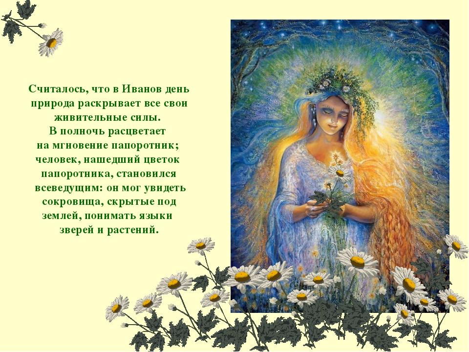 Считалось, что в Иванов день природа раскрывает все свои живительные силы. В...