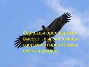 Однажды орёл взлетел высоко - высоко, окинул взором четыре стороны света и ув