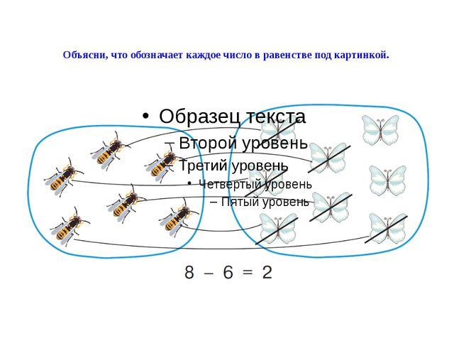 Объясни, что обозначает каждое число в равенстве под картинкой.