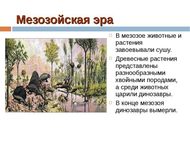 Мезозойская эра В мезозое животные и растения завоевывали сушу. Древесные рас...