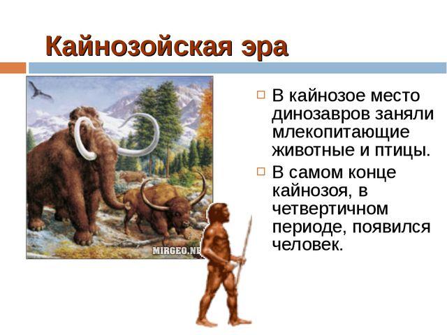 Кайнозойская эра В кайнозое место динозавров заняли млекопитающие животные и...