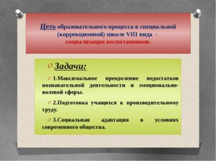 Цель образовательного процесса в специальной (коррекционной) школе VIII вида