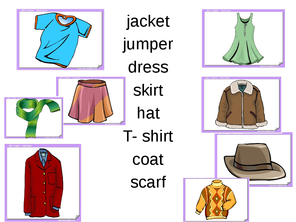 jacket jumper dress skirt hat T- shirt coat scarf
