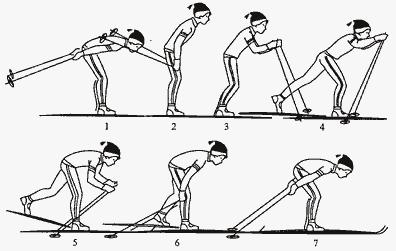 Одновременный одношажный ход (методика обучения)