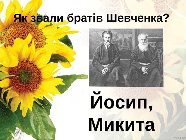 Як звали братів Шевченка? Йосип, Микита