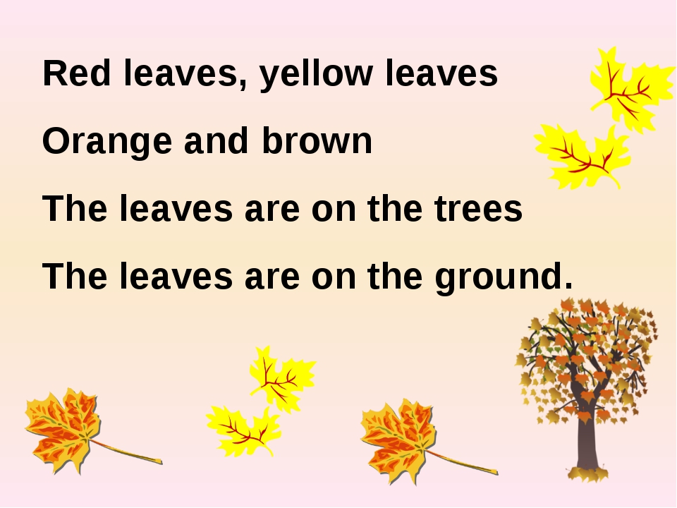 Red leaves, yellow leaves Orange and brown The leaves are on the trees The le...
