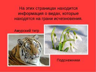 На этих страницах находится информация о видах, которые находятся на грани ис