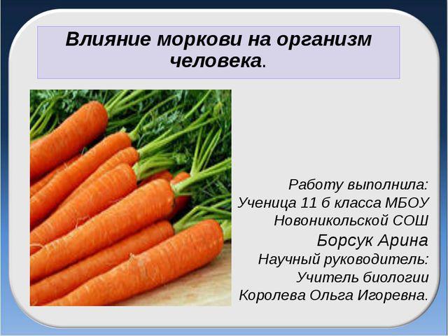 Работу выполнила: Ученица 11 б класса МБОУ Новоникольской СОШ Борсук Арина На...
