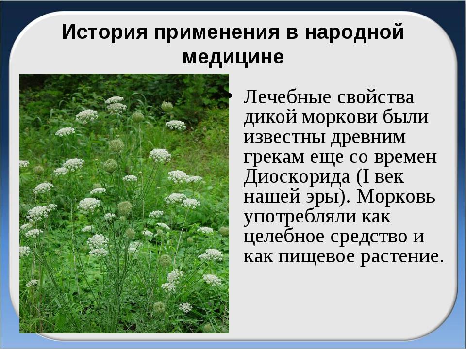 История применения в народной медицине Лечебные свойства дикой моркови были и...
