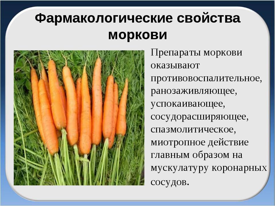 Фармакологические свойства моркови Препараты моркови оказывают противовоспали...