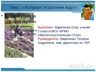 Выполнил: Кириленко Егор, ученик 2 класса МОУ ИРМО «Малоголоустненская СОШ»