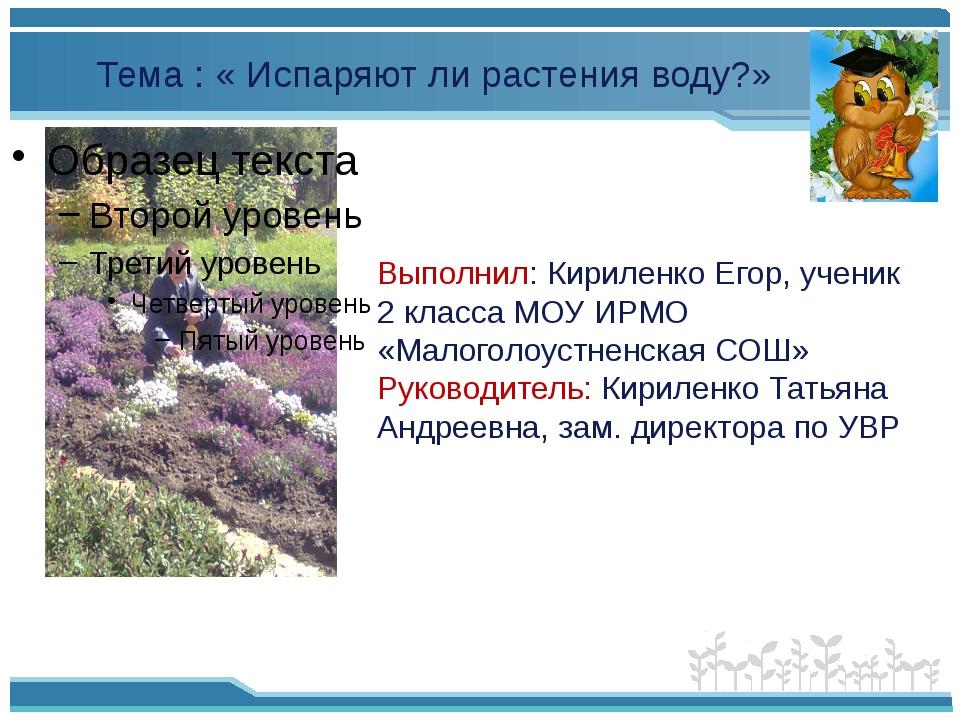 Выполнил: Кириленко Егор, ученик 2 класса МОУ ИРМО «Малоголоустненская СОШ»...