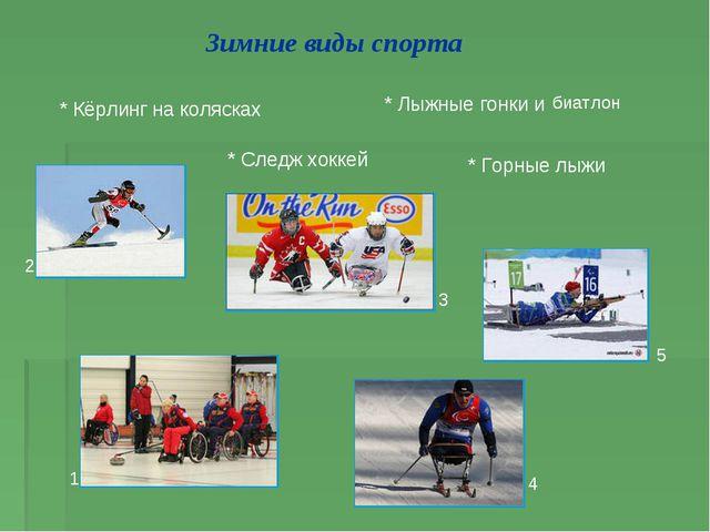 Зимние виды спорта * Лыжные гонки и * Горные лыжи * Следж хоккей * Кёрлинг на...