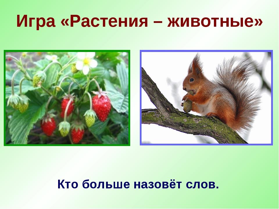 Игра «Растения – животные» Кто больше назовёт слов.