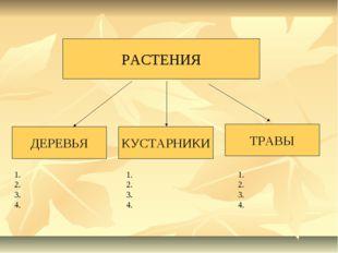 РАСТЕНИЯ ДЕРЕВЬЯ КУСТАРНИКИ ТРАВЫ 1. 2. 3. 4. 1. 2. 3. 4. 1. 2. 3. 4.