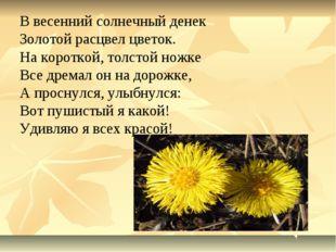 В весенний солнечный денек Золотой расцвел цветок. На короткой, толстой ножке