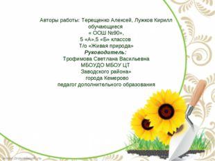 Авторы работы: Терещенко Алексей, Лужков Кирилл обучающиеся « ООШ №90», 5 «А»