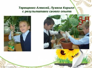 Терещенко Алексей, Лужков Кирилл с результатами своего опыта