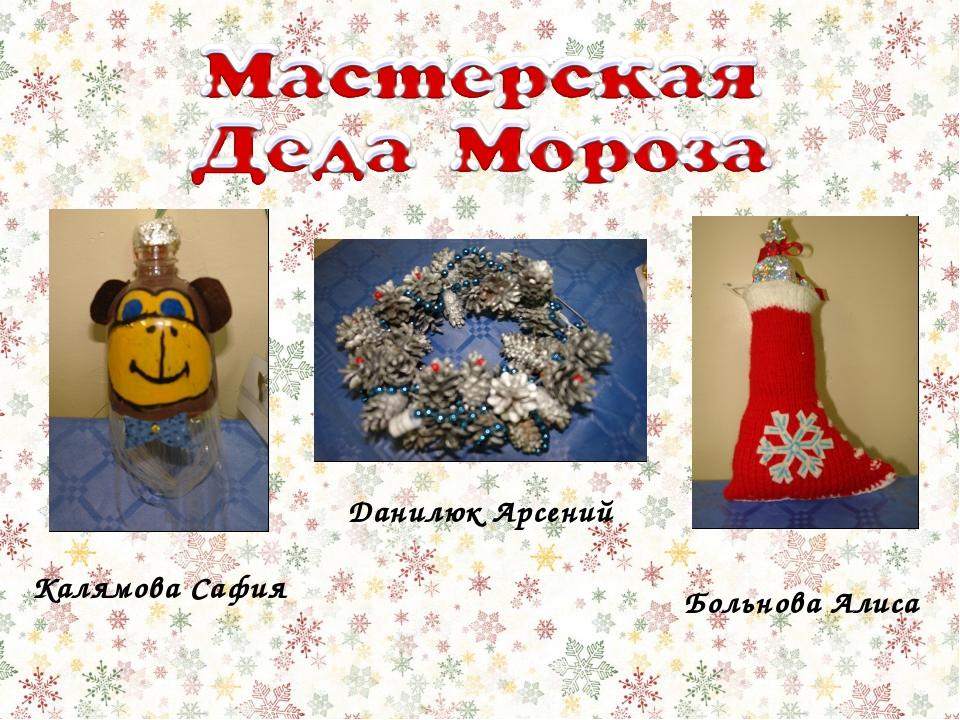 Больнова Алиса Калямова Сафия Данилюк Арсений