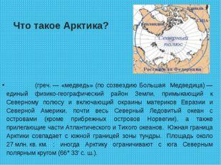 Что такое Арктика? А́рктика(греч.— «медведь» (по созвездию Большая Медведиц
