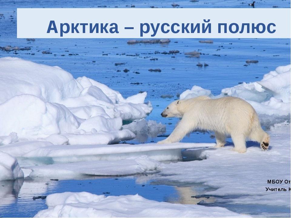 Арктика – русский полюс МБОУ Отрадовская СОШ Учитель Косивченко Ю.И 2016 г
