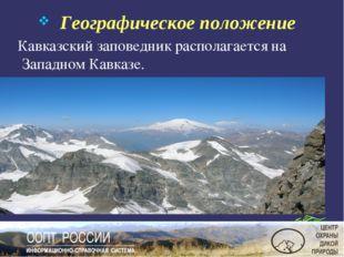 Географическое положение Кавказский заповедник располагается на Западном Кав