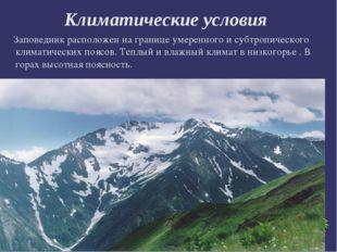 Климатические условия Заповедник расположен на границе умеренного и субтропич