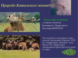 Природа Кавказского заповедника Это второй по величине горно-лесной заповедни