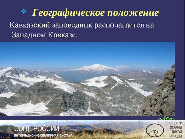 Географическое положение Кавказский заповедник располагается на Западном Кав...