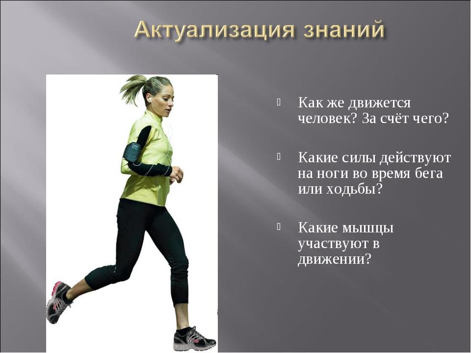 Как же движется человек? За счёт чего? Какие силы действуют на ноги во время...