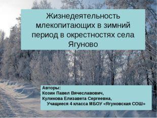 Жизнедеятельность млекопитающих в зимний период в окрестностях села Ягуново А