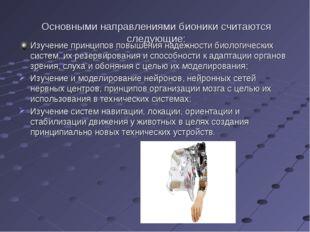 Основными направлениями бионики считаются следующие: Изучение принципов повыш