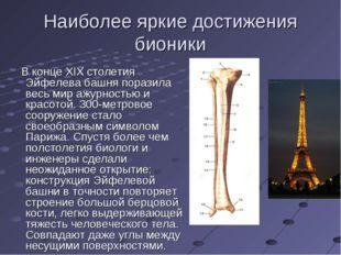 Наиболее яркие достижения бионики В конце ХIХ столетия Эйфелева башня поразил