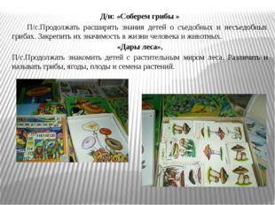 Д/и: «Соберем грибы » П/с.Продолжать расширять знания детей о съедобных и нес