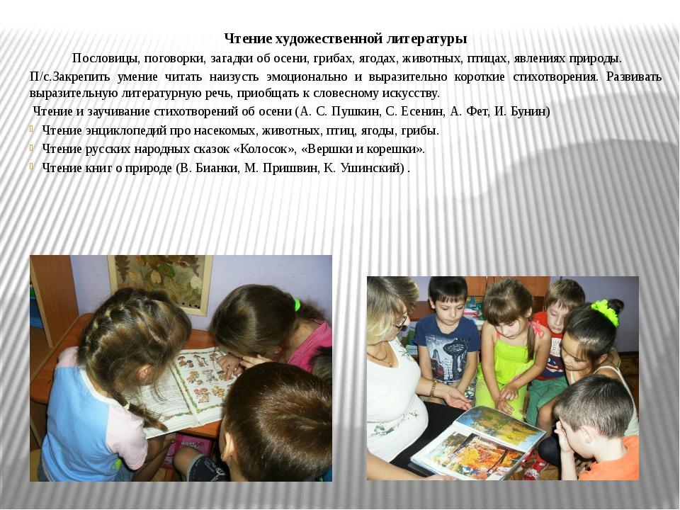 Чтение художественной литературы Пословицы, поговорки, загадки об осени, гриб...