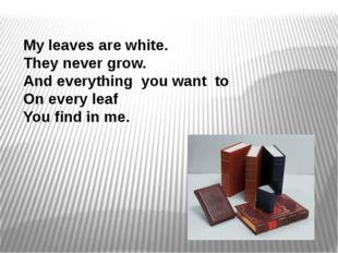 My leaves are white. They never grow. And everything you want to On every lea