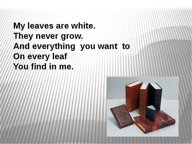 My leaves are white. They never grow. And everything you want to On every lea...