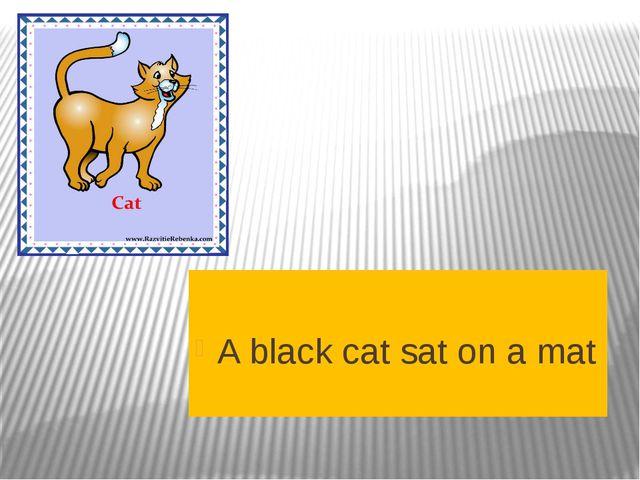A black cat sat on a mat