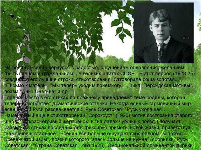 """На родину Есенин вернулся с радостью, ощущением обновления, желанием """"быть пе..."""