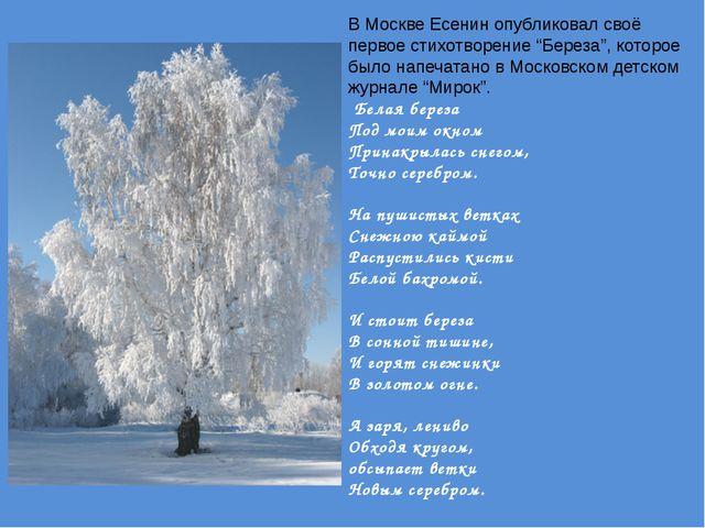 """В Москве Есенин опубликовал своё первое стихотворение """"Береза"""", которое было..."""