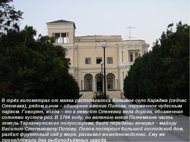 В трёх километрах от маяка располагалось большое село Караджа (сейчас Оленевк...