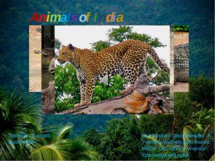 Animals of India Выполнила: десятникова А. В. Учитель английского языка МБОУ