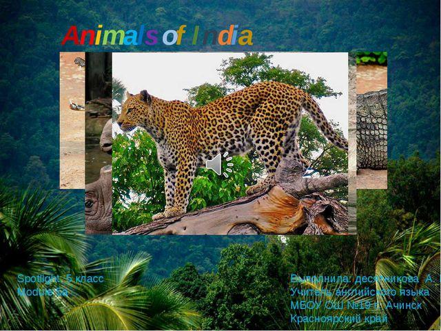 Animals of India Выполнила: десятникова А. В. Учитель английского языка МБОУ...