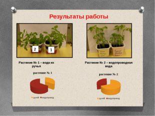 Результаты работы Растение № 1 – вода из ручья Растение № 2 – водопроводная в