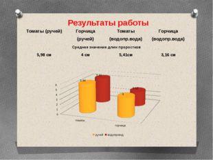 Результаты работы Томаты (ручей) Горчица (ручей) Томаты (водопр.вода) Горчица